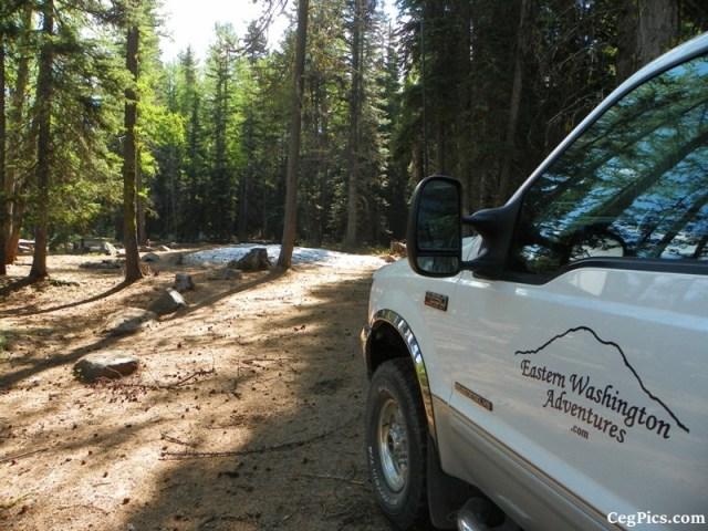 Tree Phones Camping Trip 11