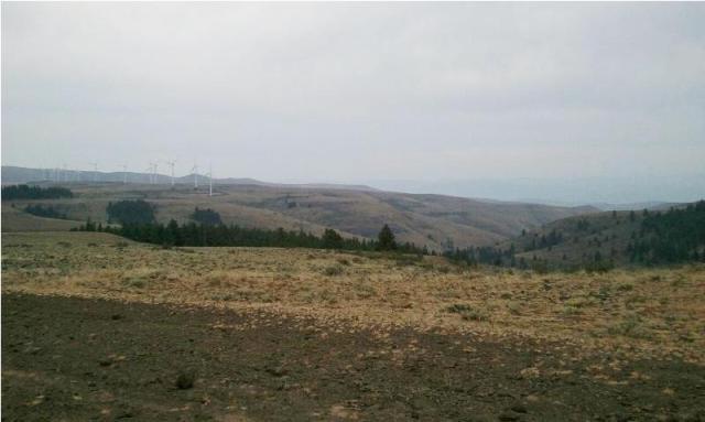 DNR/WDFW Naneum Ridge Field Trip 2