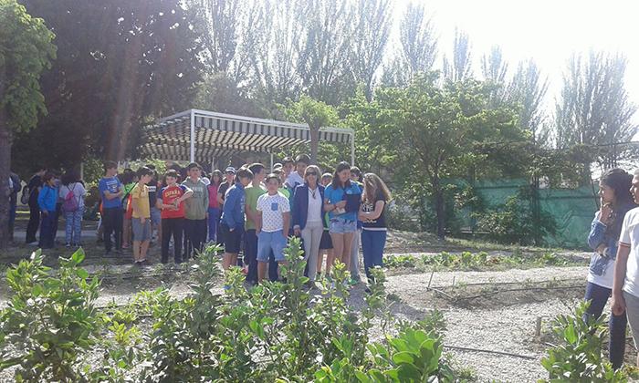 visitainstitutos_16-(5)