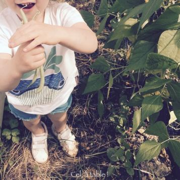 Faire cueillir à l'enfant des légumes