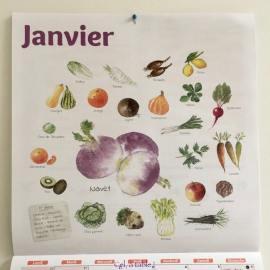 Calendrier illustré (de Terre Vivante) avec les légumes de saison