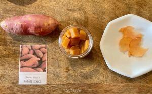 Dégustation de patate douce