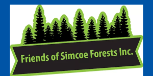 Friends of Simcoe Forest Files Court Challenge Over Waste Facility in Freele County Forest