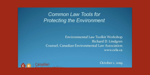 Common Law Tools for  Protecting the Environment