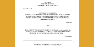 Affidavit of Theresa McClenaghan – Divisional Court Application re Bill 197