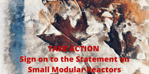 Take Action Against Small Modular Reactors