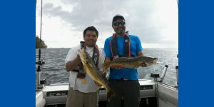 Two fishers holding two large Walleye