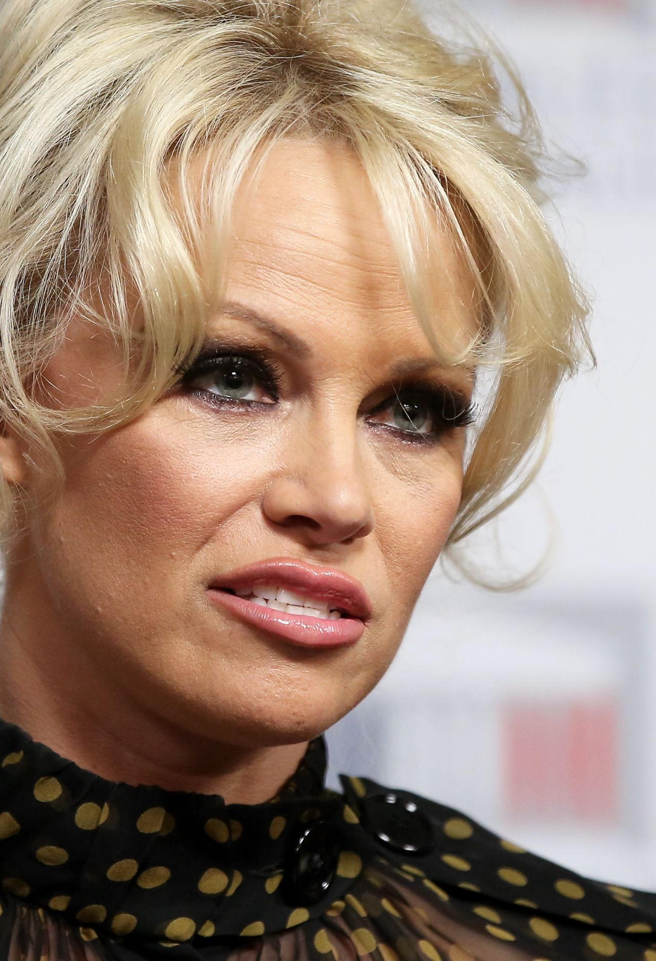 Pam Anderson January 2016