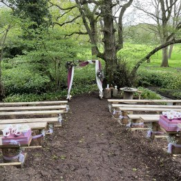 Katha and Alex Ceremony in Woodland