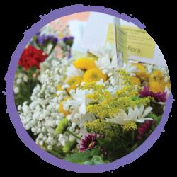 flowers_circled