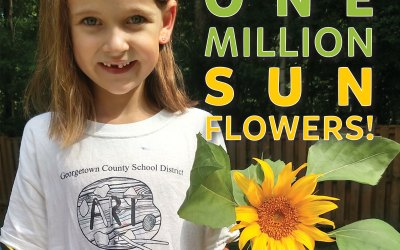 Imagine One Million Sunflowers!
