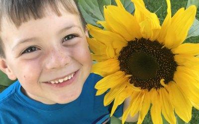 Sunflower Handouts! Free Downloads!