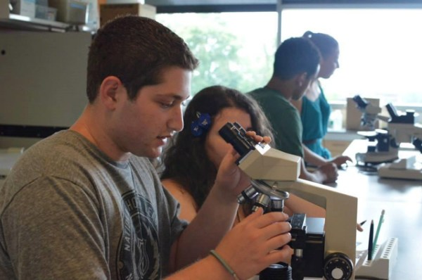 Science track students are working on biology experiments. Photo courtesy: Brandeis University High School Programs.