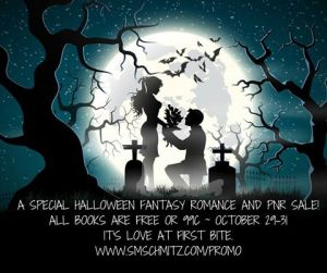 fantasy-romance-promo