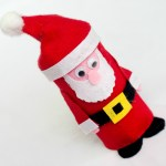 Cute Felt Santa Toilet Paper Roll Craft