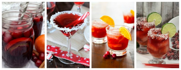 A collection of 10 festive and delicious cranberry drink recipes for the holidays.