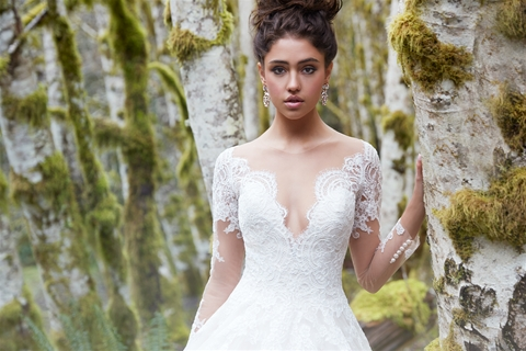 Home | Welcome to Celebrations Bridal & Fashion!