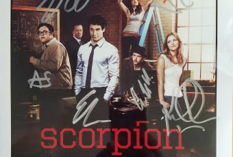 Scorpion Cast Photo