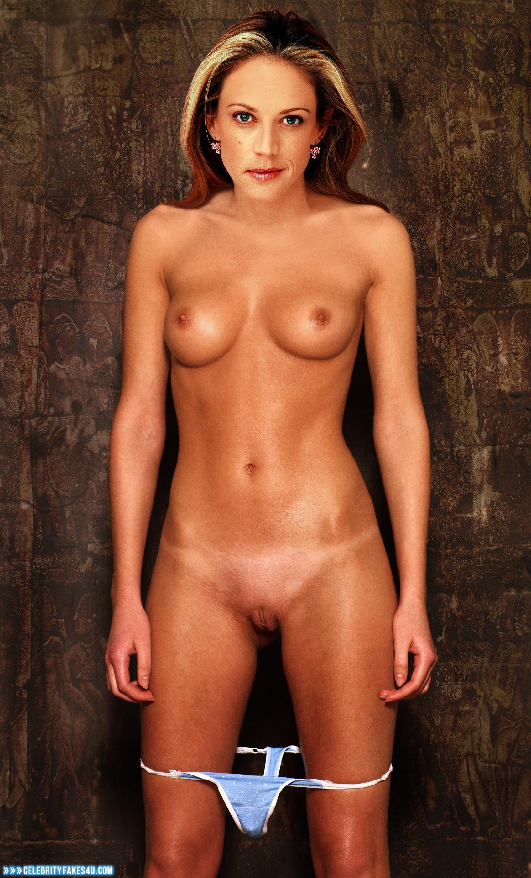 Ally Walker Naked Fakes Porno Photo