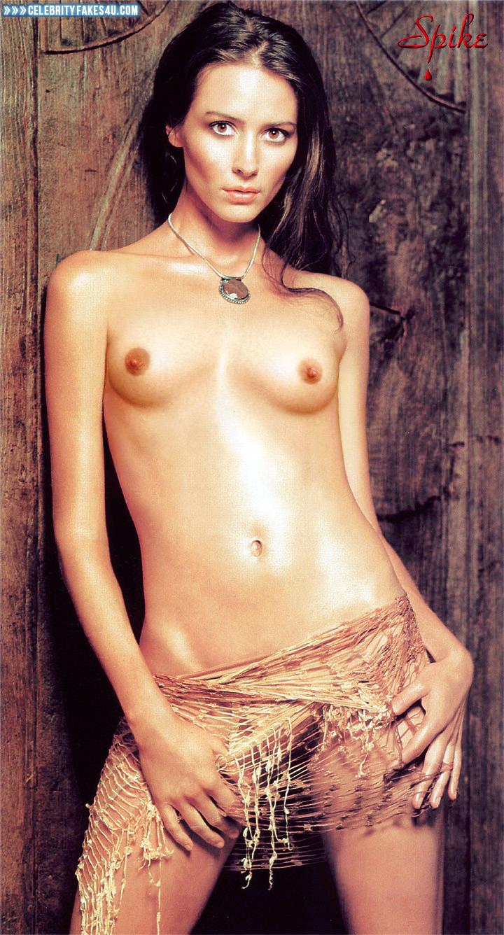 Amy Acker Tits amy acker tits fake-003 « celebrity fakes 4u