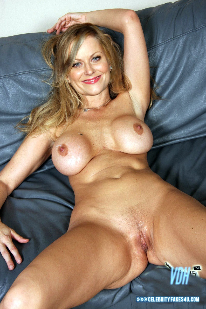 amy-poehler-nude-picture-pantyhose-for-pilots