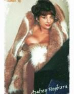 Audrey Hepburn Big Tits Fake 002