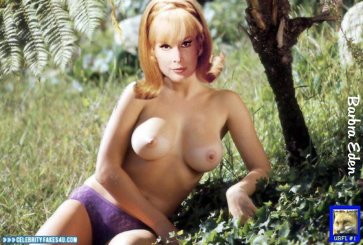 Barbara Eden Fake, Blonde, Nude, Outdoor, Tits, Topless, Porn