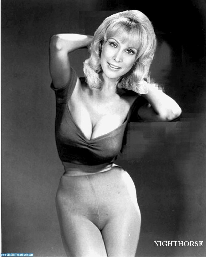 Barbara eden in panties