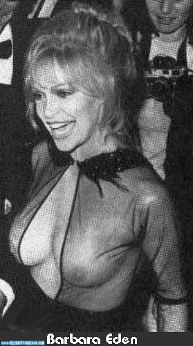 Barbara Eden Fake, Nude, Public, See-Thru, Tits, Porn