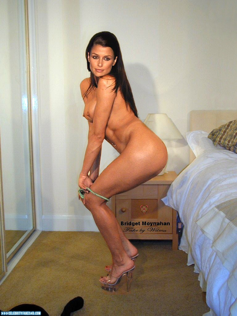Bridget moynahan hot nude #5