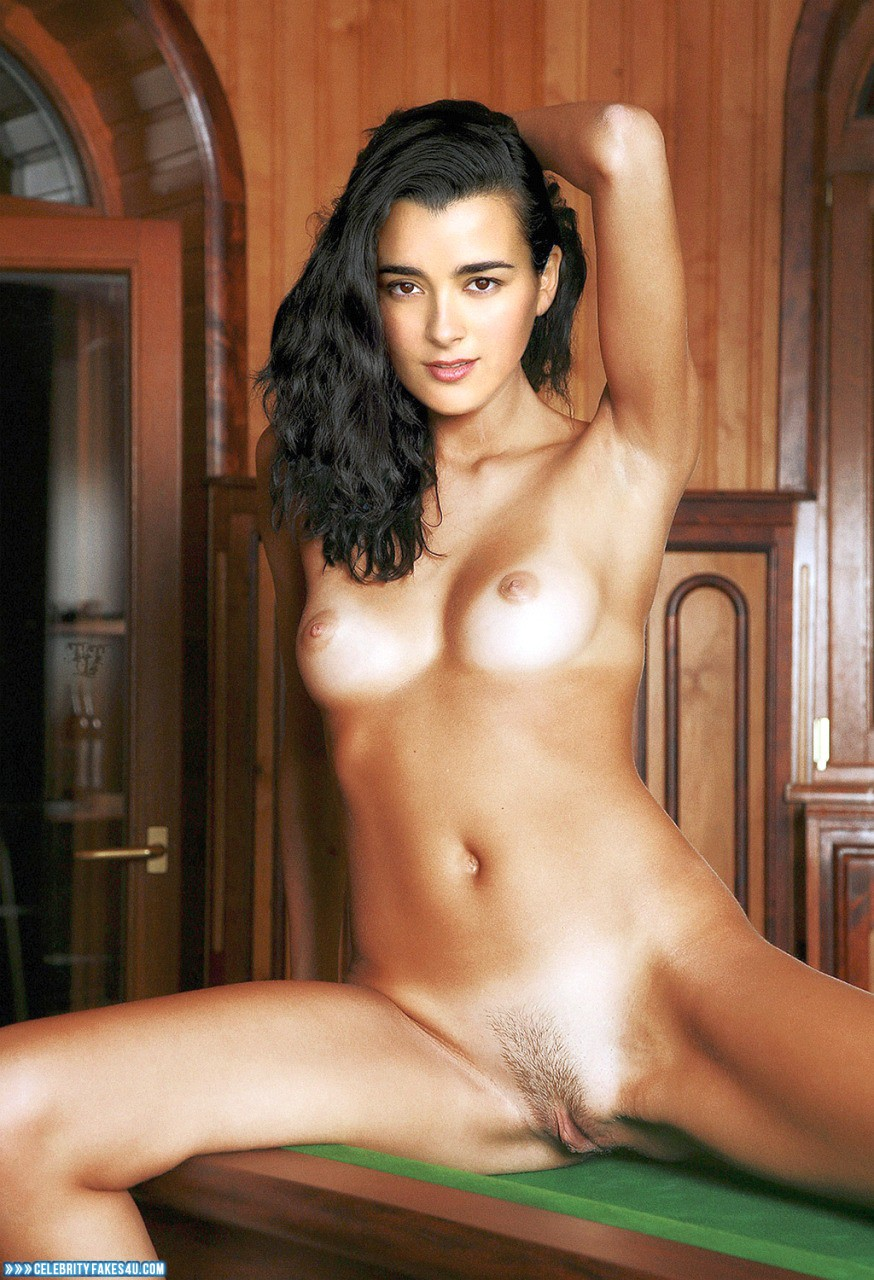 Cote De Pablo Fake, Horny, Legs Spread, Naked Body, Nude, Pantiless, Pussy, Tits, Porn