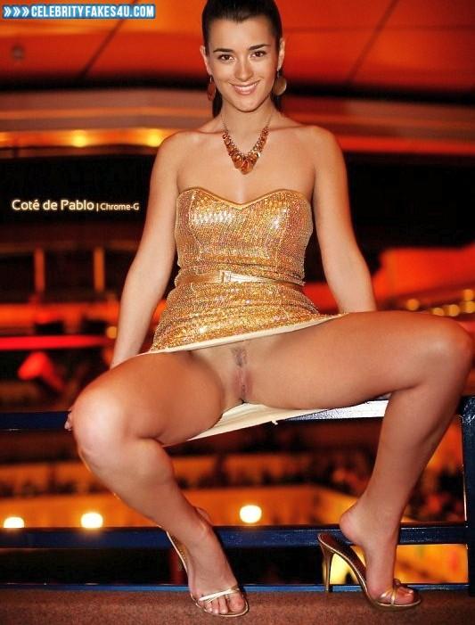 Cote De Pablo Fake, Legs Spread, Nude, Pantiless, Pussy, Upskirt, Porn