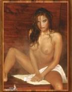 Denise Richards Wet Tits Fakes 001