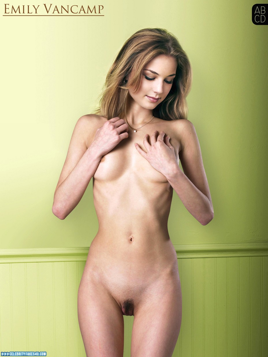 Emily Vancamp Fake, Nude, Squeezing Breasts, Porn