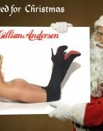 Gillian Anderson Porn Ass 001
