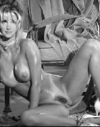Heather Locklear Toon Wet 001