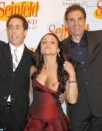 Julia Louis Dreyfus Nipple Slip Seinfeld Nude Fake 001
