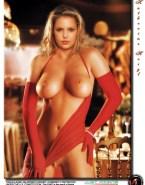 Katherine Heigl Large Hot Tits Porn 001