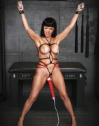 Katy Perry Nipple Torture Sex Toy Nsfw Fake 001