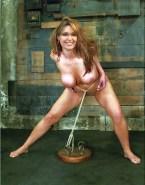 Sarah Palin Breasts Bondage 001
