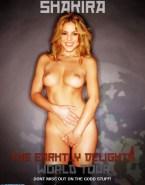 Shakira Rubs Pussy Movie Cover Nude Fake 001