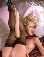 Sharon Stone Shaved Pussy Ass Porn 001