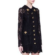 Dolce & Gabbana Embroidered Lace A-Line Minidress