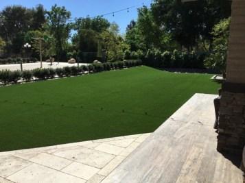 Phoenix backyard artificial grass