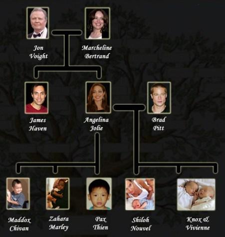 Angelina Jolie Family Tree