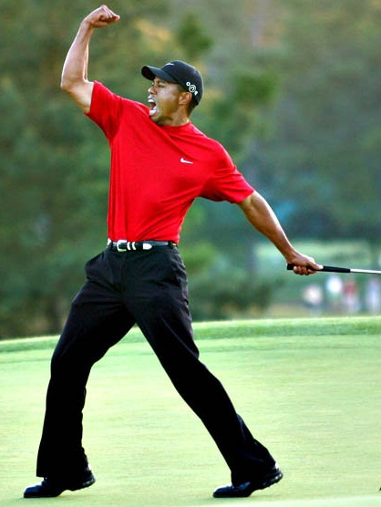Tiger Woods Body Measurements Stats