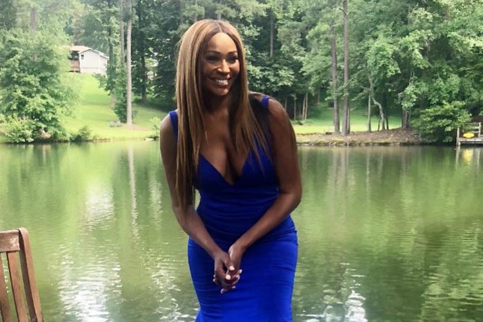 Cynthia Bailey Shares A Jaw-Dropping Photo Of Lake Bailey That Will Take Your Breath Away