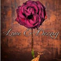Love and Decay Volume 1 (Episodes 1-6) by Rachel Higginson
