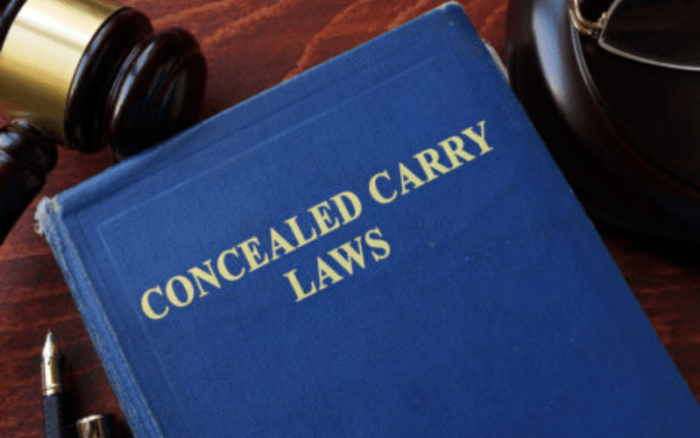 Can a Felon Get a Concealed Carry Permit Law