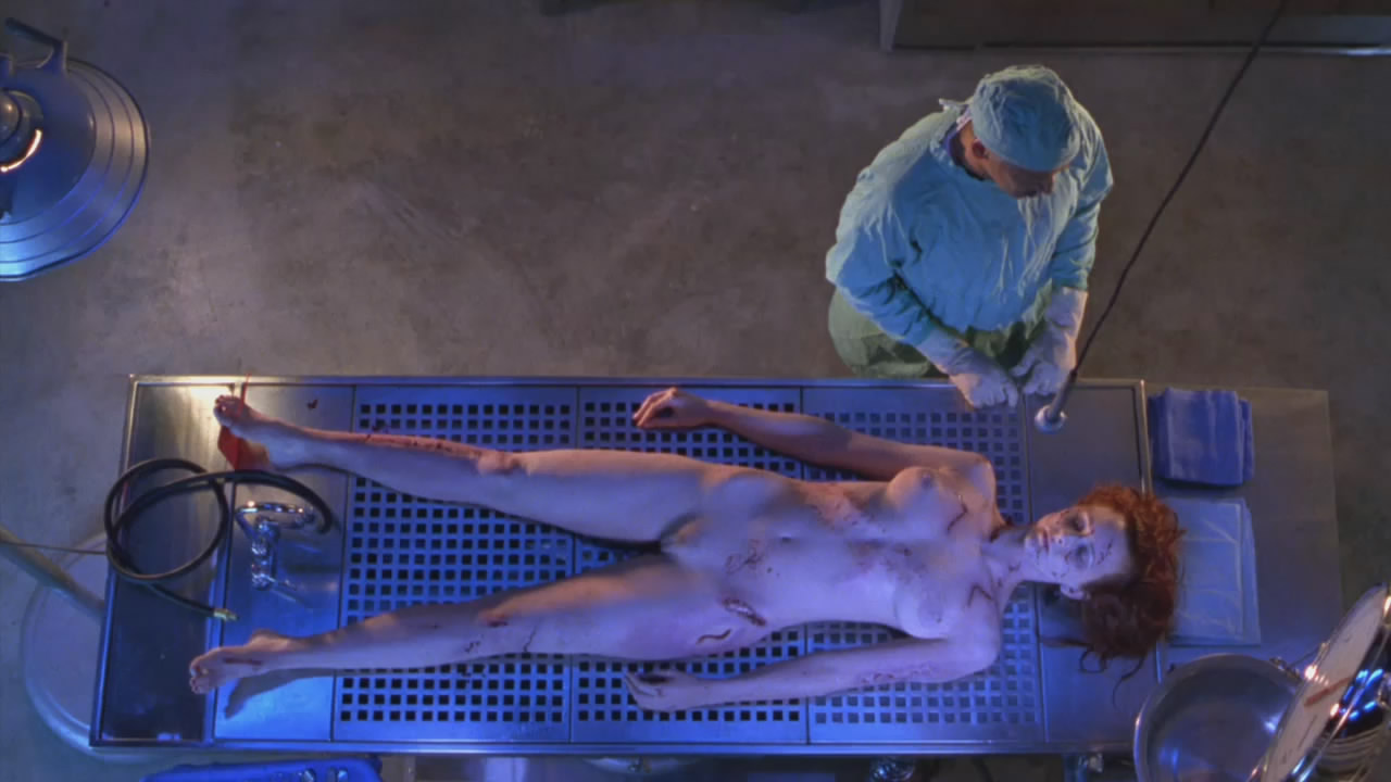 Angie Everhart Playboy angie everhart - nude celebrities